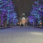 札幌の冬を幻想的に彩る、「アカプライルミネーション」がスタート